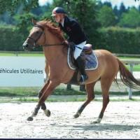 Bloody du Rosemont Champion de France des poneys E élite